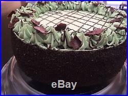 AMAZING Chocolate Mint Whole Ice Cream Cake! Very REALISTIC Fake Food Prop